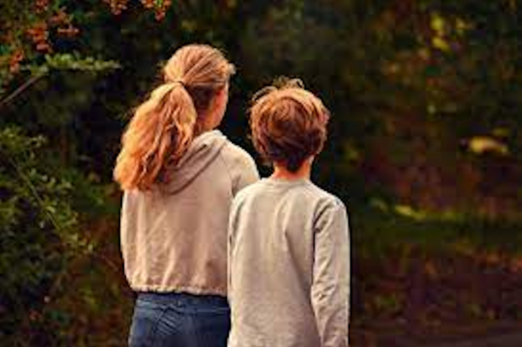 Het Puberbrein – Een Handleiding